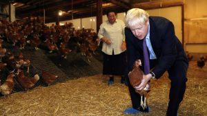 ウェールズの農家を訪問し、鶏を抱き上げるジョンソン英首相(写真:代表撮影/ロイター/アフロ)
