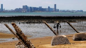 FILE PHOTO: An oyster farmer walks in front of China's Xiamen, ahead of the 60th anniversary of Second Taiwan Straits Crisis against China, on Lieyu Island, Kinmen County, Taiwan August 20, 2018. REUTERS/Tyrone Siu/File Photo To match Special Report HONGKONG-TAIWAN/MILITARY